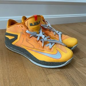 "*RARE* Nike Max LeBron XI Low ""Floridian"""